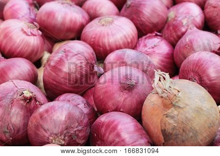 fresh shallots in the market is delicious