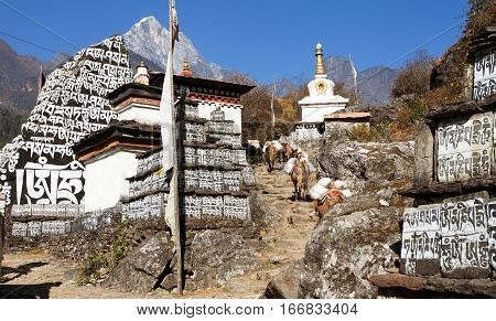 Buddhist prayer mani walls with stupa prayer flag and caravan of mules way to Everest base camp way from Lukla to Namche Bazar Nepal