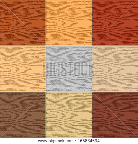 9 colors wood texture background. Blank natural pattern swatch template. Empty realistic plank with annual years circles. Backdrop size square format. Vector illustration design elements 8 eps
