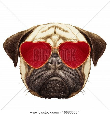 Pug Dog in Love! Portrait of Pug Dog with heart shaped sunglasses. Hand-drawn illustration, digitally colored.