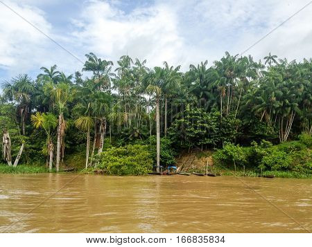 amazon river and amazonas in Brazil south america