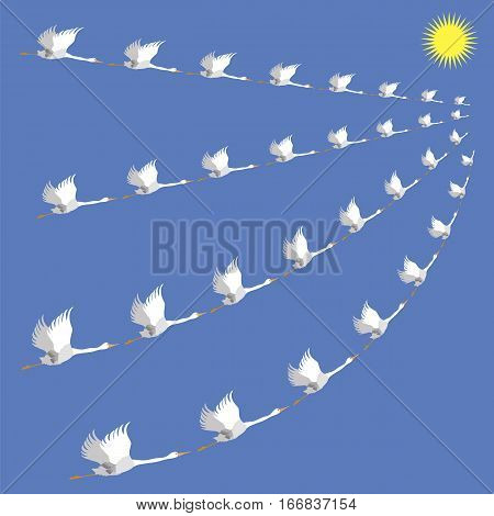 Flock of White Geese. Wild Birds Fly on Blue Heaven Background. Seasonal Migration to Warmer Climes