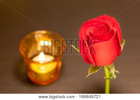 A single beautiful red rose and blurred background of candlelight in red glass romantic night concept.