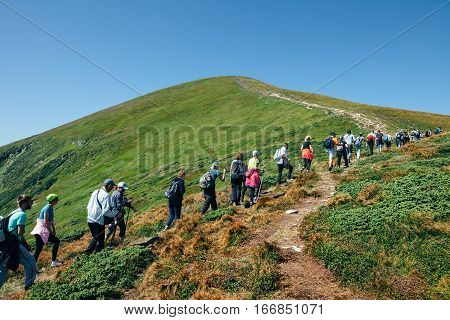 Carpathians, Ukraine - August, 19 2016: Carpathiansgroup Of Hikers Walking In Mountains. Travel Conc