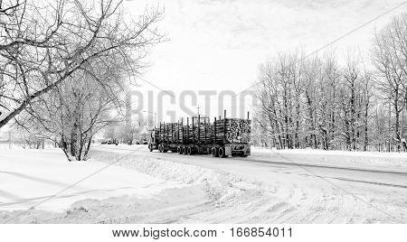 An eighteen wheel truck hauling a load of cut logs down a street through a small town in black and white winter landscape