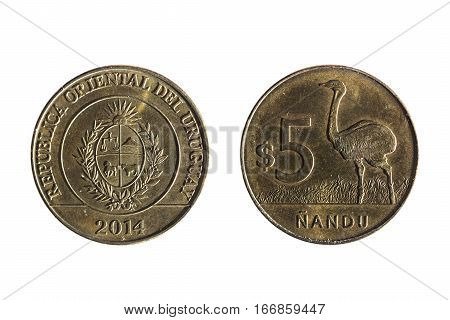 Five Peso Uruguayan Currency