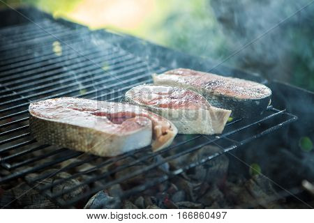 grilled fish on the grill. open fire