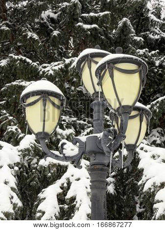 Frosted street lamp post covered with snow.