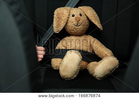 Woman fastening toy bunny in car