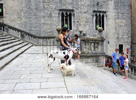 Girona, Spain - August 2, 2014: Dog walking in the medieval quarter of Girona