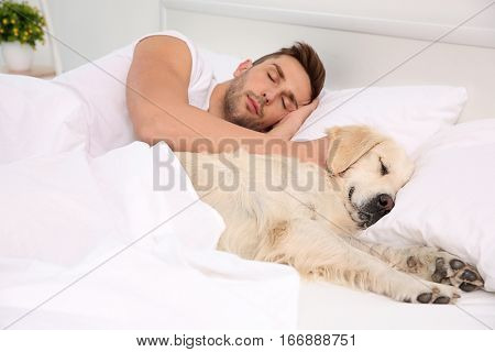 Labrador dog sleeping with owner in bed
