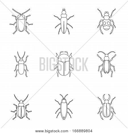 Insects beetles icons set. Outline illustration of 9 insects beetles vector icons for web