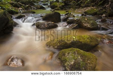Small creek running on the Pisgah National Forest in North Carolina