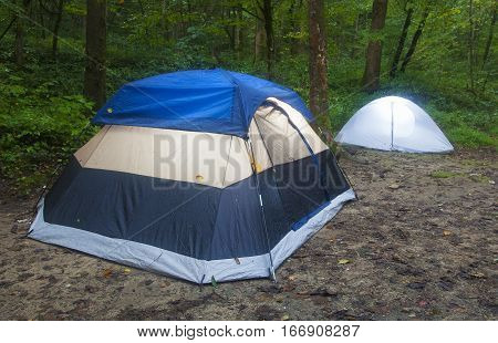 Two small tents in a campsite in a dark forest