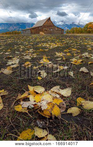 Mormon Row Historic In Grand Teton National Park