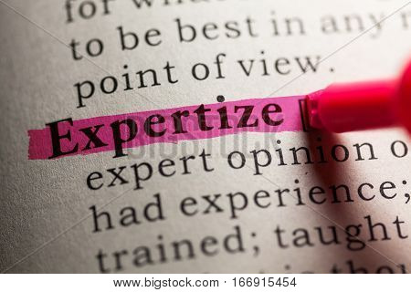 Fake Dictionary definition of the word expertize.