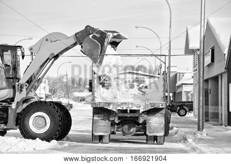 A loader dumping a bucket of snow onto the box of a grain truck on a main street of small town in winter in black and white