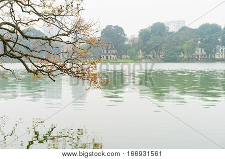 Tree In Bud At Hoan Kiem Lake In Hanoi Capital With Turtle Tower - The Symbol Of Vietnam. Focus On T