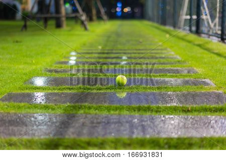 Tennis Ball On Wet Walkway And Grass After Raining