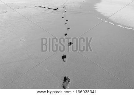 Beach sands human footprints along ocean waterline vintage black and white.
