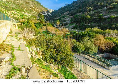 Bustan (orchard) Khayat In Wadi Siah, Haifa