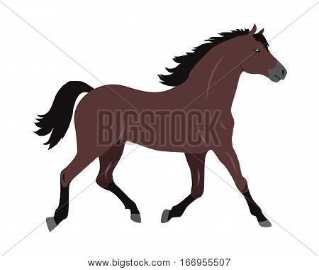 Running sorrel horse flat style vector. Domestic animal. Country inhabitants concept. Illustration for farming, animal husbandry, horse sport companies. Agricultural species. Isolated on white