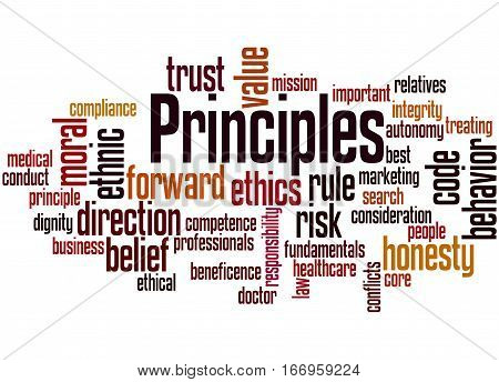 Principles, Word Cloud Concept 5