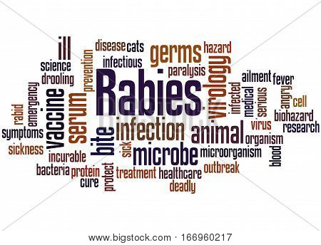 Rabies, Word Cloud Concept 2
