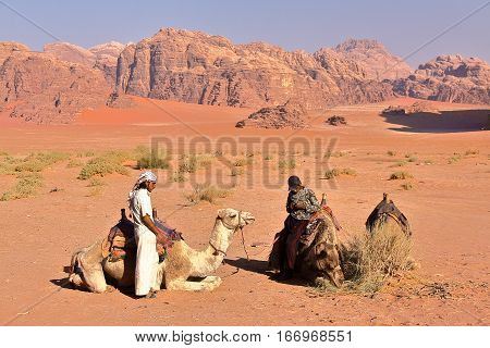 WADI RUM, JORDAN - NOVEMBER 12, 2010: Jordanian guides preparing camels for hiking in Wadi Rum desert
