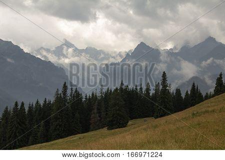 Górskie pasmo pokryte chmurami, oraz las i ł
