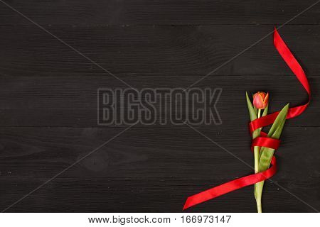 Red tulip in the black wooden table. Banner template layout mockup for Woman Day, Valentines Day and Teacher's Day. Photo for posts, blogs, advertising and news.
