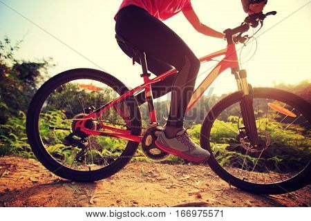 one young woman cyclist riding mountain bike on forest trail