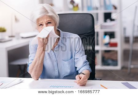 Suffering from a cold. Upset exhausted eldered businesswoman sitting at the table in the office and touching her nose while suffering from the cold