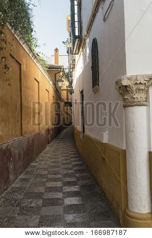 Sevilla (Andalucia Spain): old typical street in the Barrio de Santa Cruz historic quarter near the cathedral