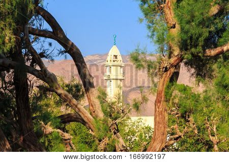 The minaret of the mosque in Dahab through the pine branches.