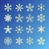 16 Snowflakes Set On Blue Background. Easy to edit vector. poster