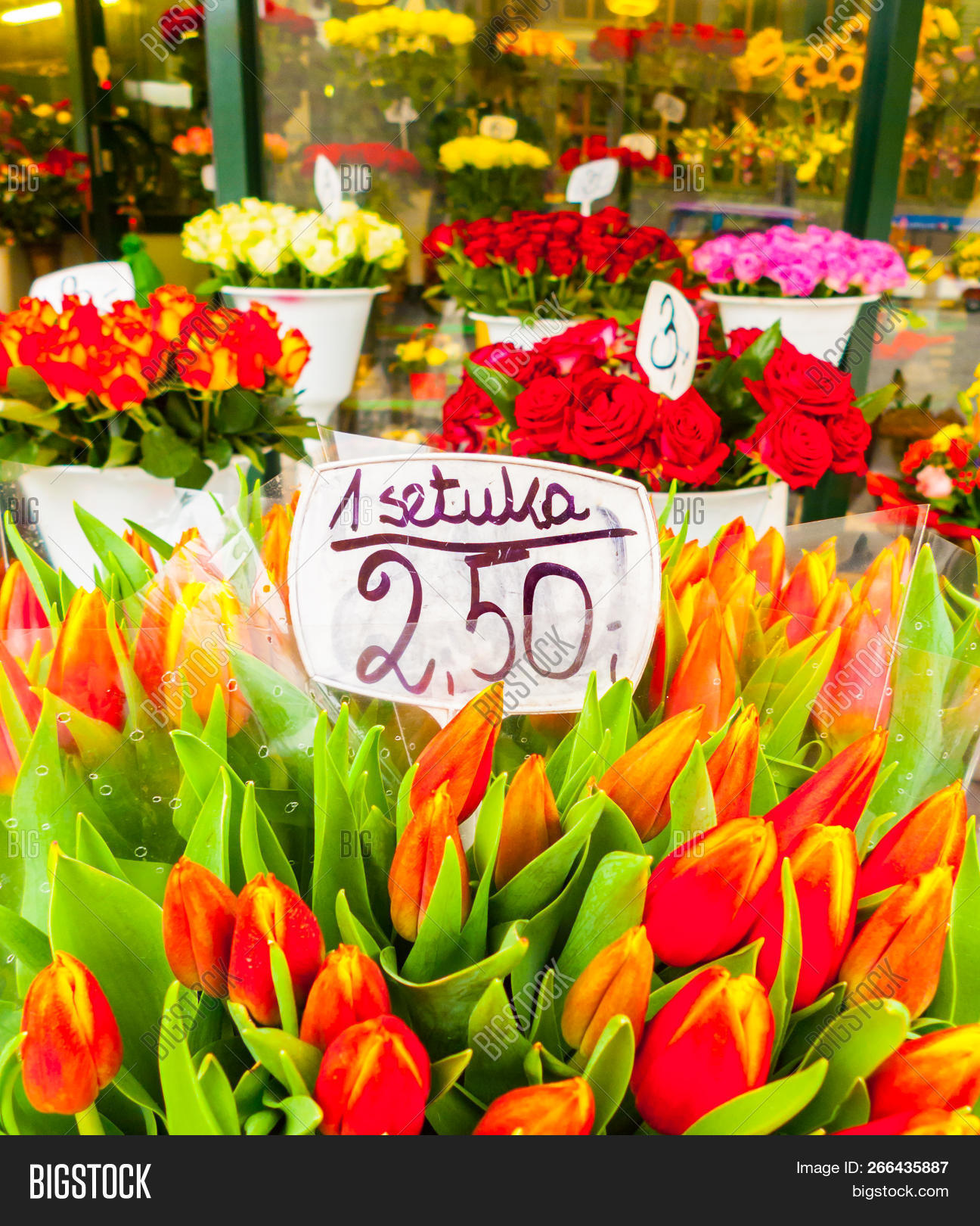Tulips For Sale At 25euro A Piece Sztuka In The Flower Market