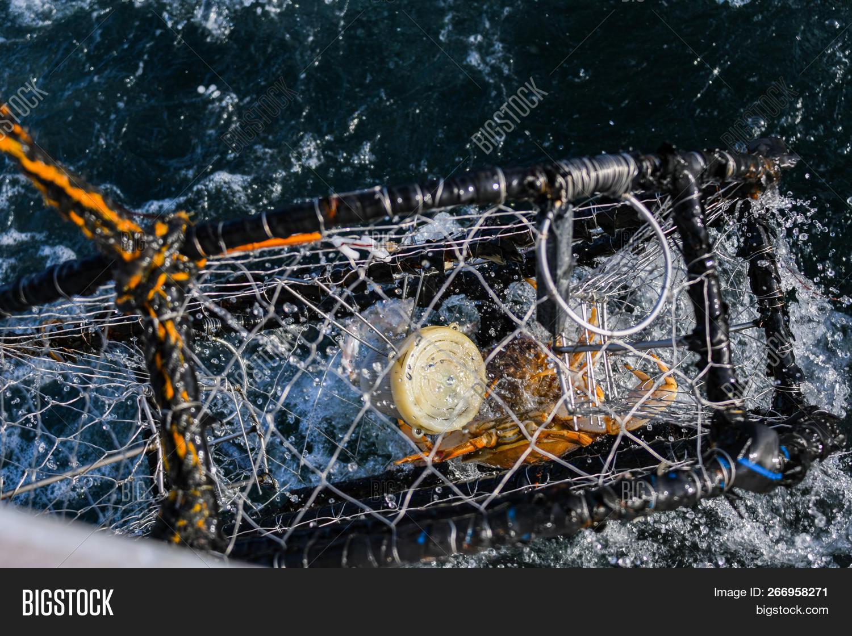 Crab Fishing Off Coast Image & Photo (Free Trial) | Bigstock