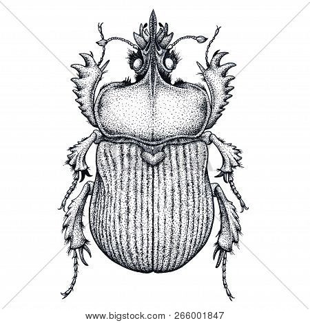 Scarab Beetle Tattoo. Dot Work Tattoo. Insect. Symbol Of Eternal Life, Resurrection, Revival. Black