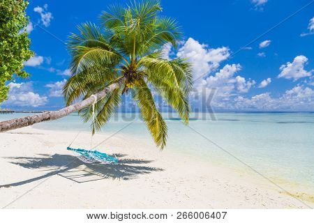 Beautiful Beach Landscape. Swing On Palm Trees Over Shallow Sea Water, Idyllic Beach Scene. Summer H