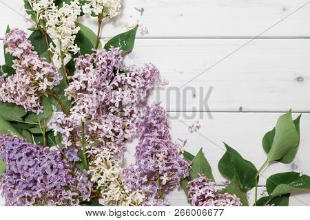 Beautiful White And Violet Lilac Flowers Branches On The Horizontal White Wooden Background, Mock Up