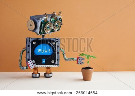 Robot And Plant In A Clay Flower Pot. Surprised Robotic Character With Message Wow Looks At The Gree