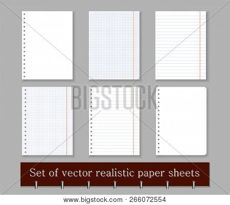 In A Cage, Ruler And Blank Sheets Of Paper Notebook Or Notebook With Perforation And Without. Set Of