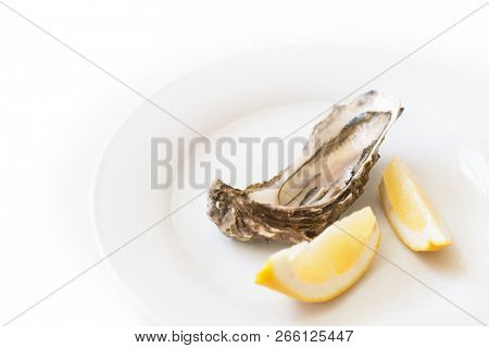 Fresh oyster with lemon. Raw fresh oyster on white round plate, image isolated, with soft focus. Restaurant delicacy. Saltwater oyster, soft focus poster