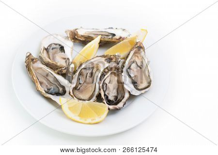 Fresh oysters. Raw fresh oysters on white round plate, image isolated, with soft focus. Restaurant delicacy. Saltwater oysters poster