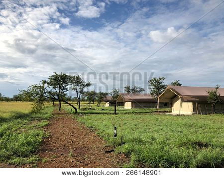 Serengeti safari tented camp lodge in wilderness, Campground at Serengeti National Park in Tanzania, East Africa