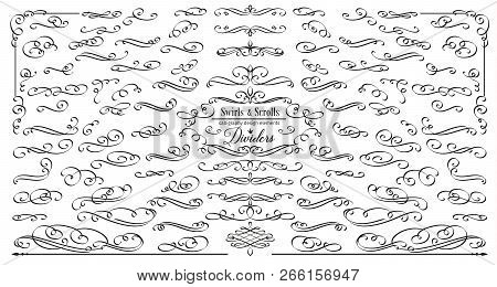 Vector Flourishes. Swirl, Scroll And Divider. Calligraphic And Page Decoration Design Elements. Swir