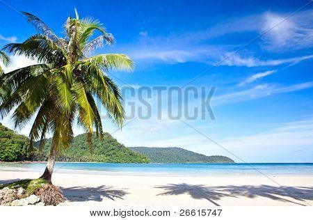 White Beach on the Island