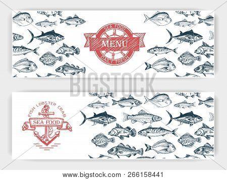 Vector Illustration Sketch - Fish Market. Card Menu Seafood. Vintage Design Template, Banner.