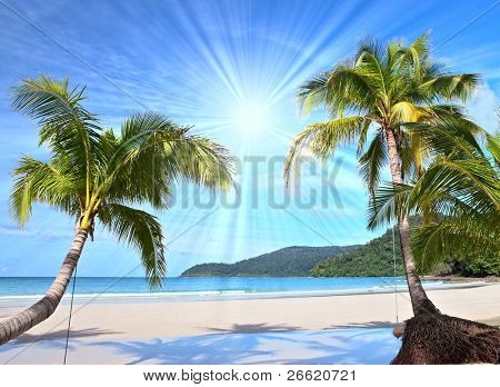 Shining sun on nice beach with palm trees